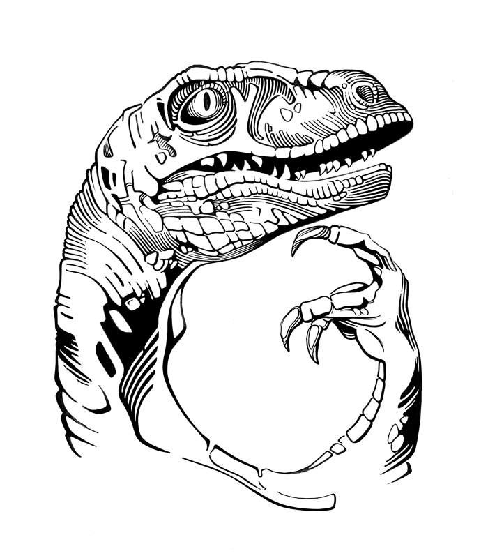 Philosoraptor high resolution, hi res